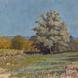 By the Walnut Orchard, Dordogne