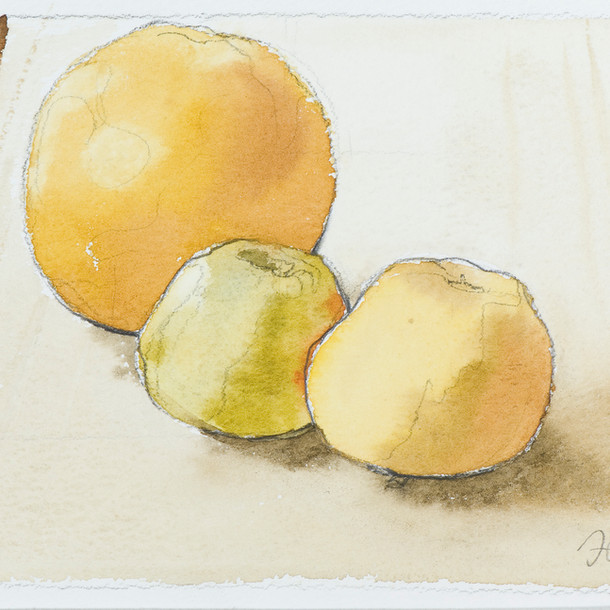 Still Life with Apples and Grapefruit