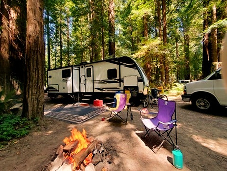 A&A Celebrate A Summer Birthday In The Redwoods