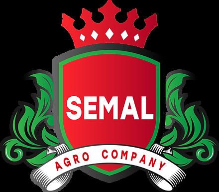 лого SEMAL _1.png