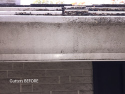 Gutters before SoftWashing