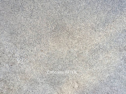 Concrete After Softwashing