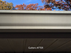 Gutters After SoftWashing