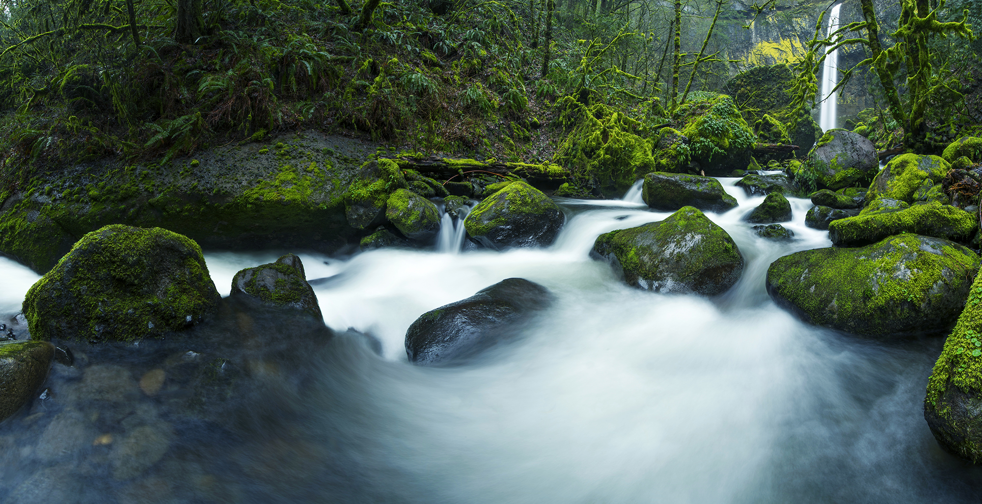 elowah falls panorama mossy rocks