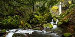 elowah falls panorama under the tree