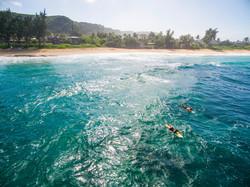 ric ronja surf freddys
