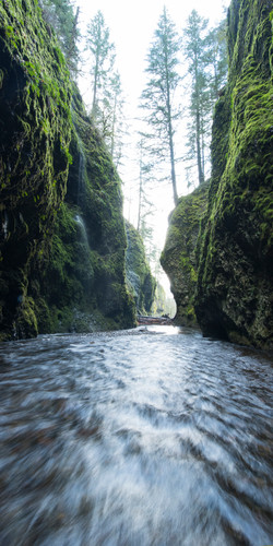oneonta gorge verticle
