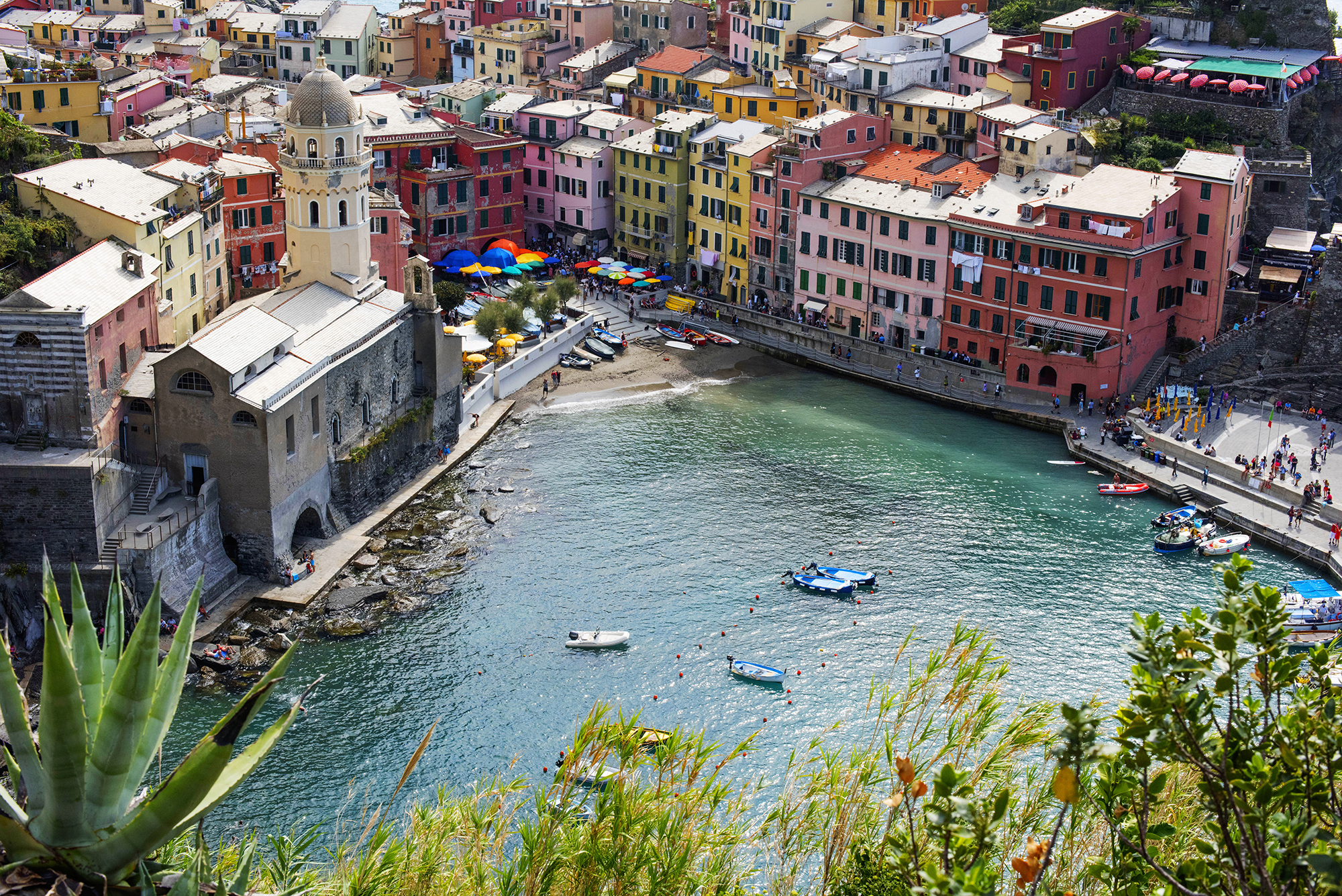 vernazza closeup