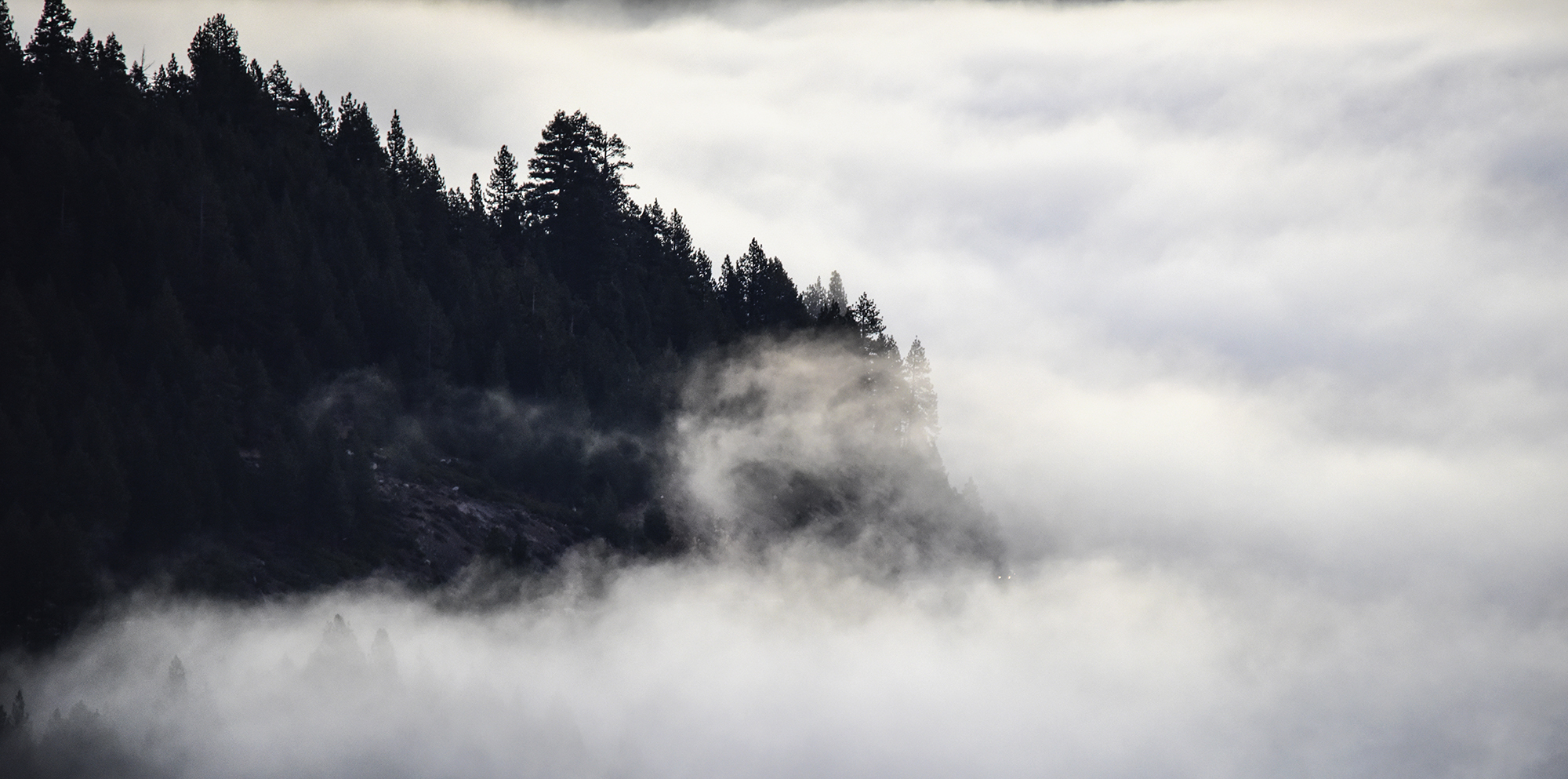 fog over donner lake