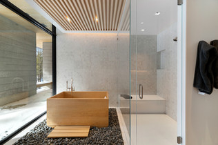 Master Bath Tub and Shower.jpg