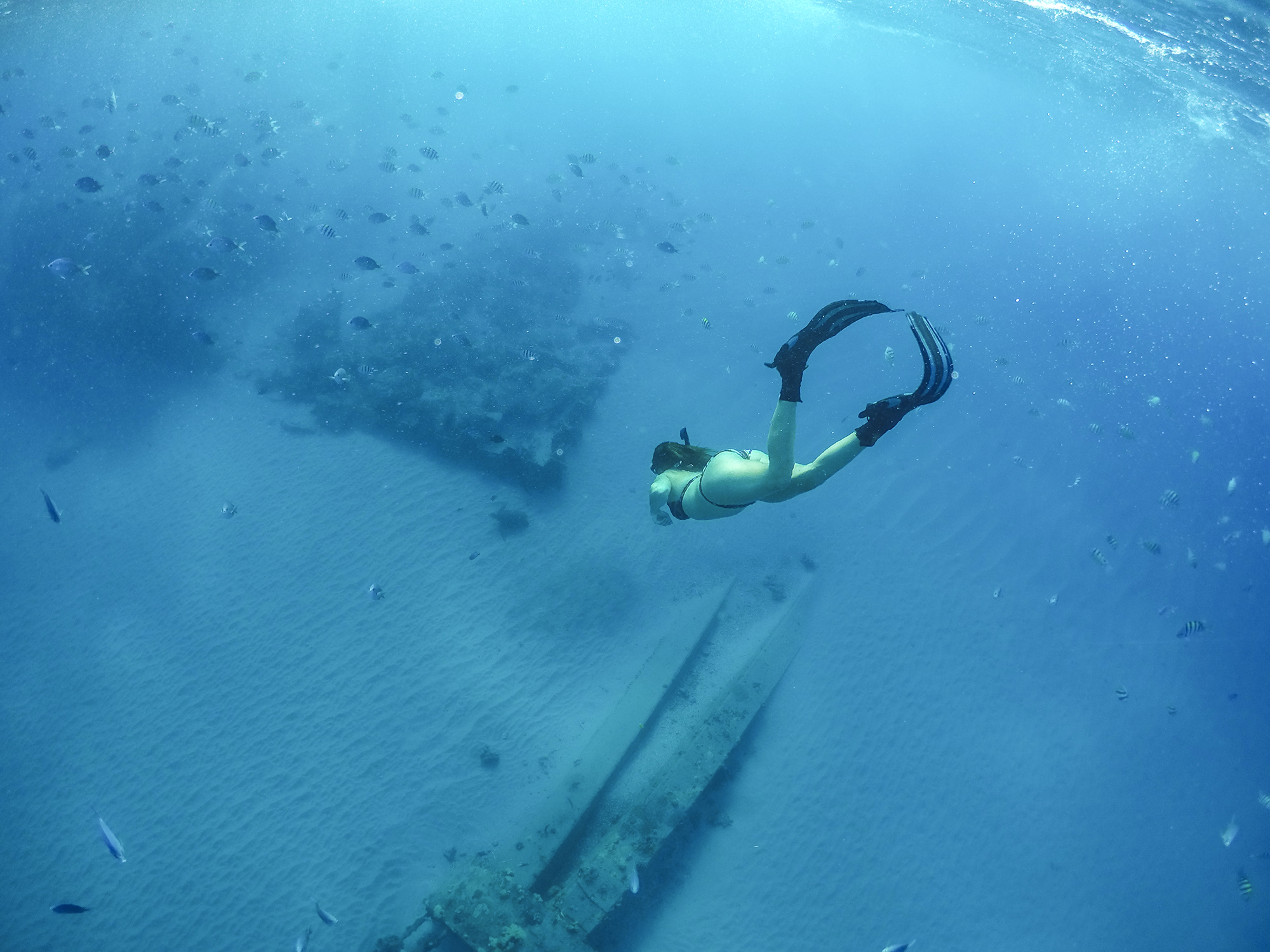 lindsey freediving