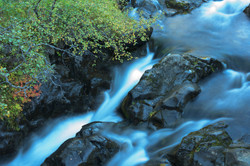 flowing river closeup
