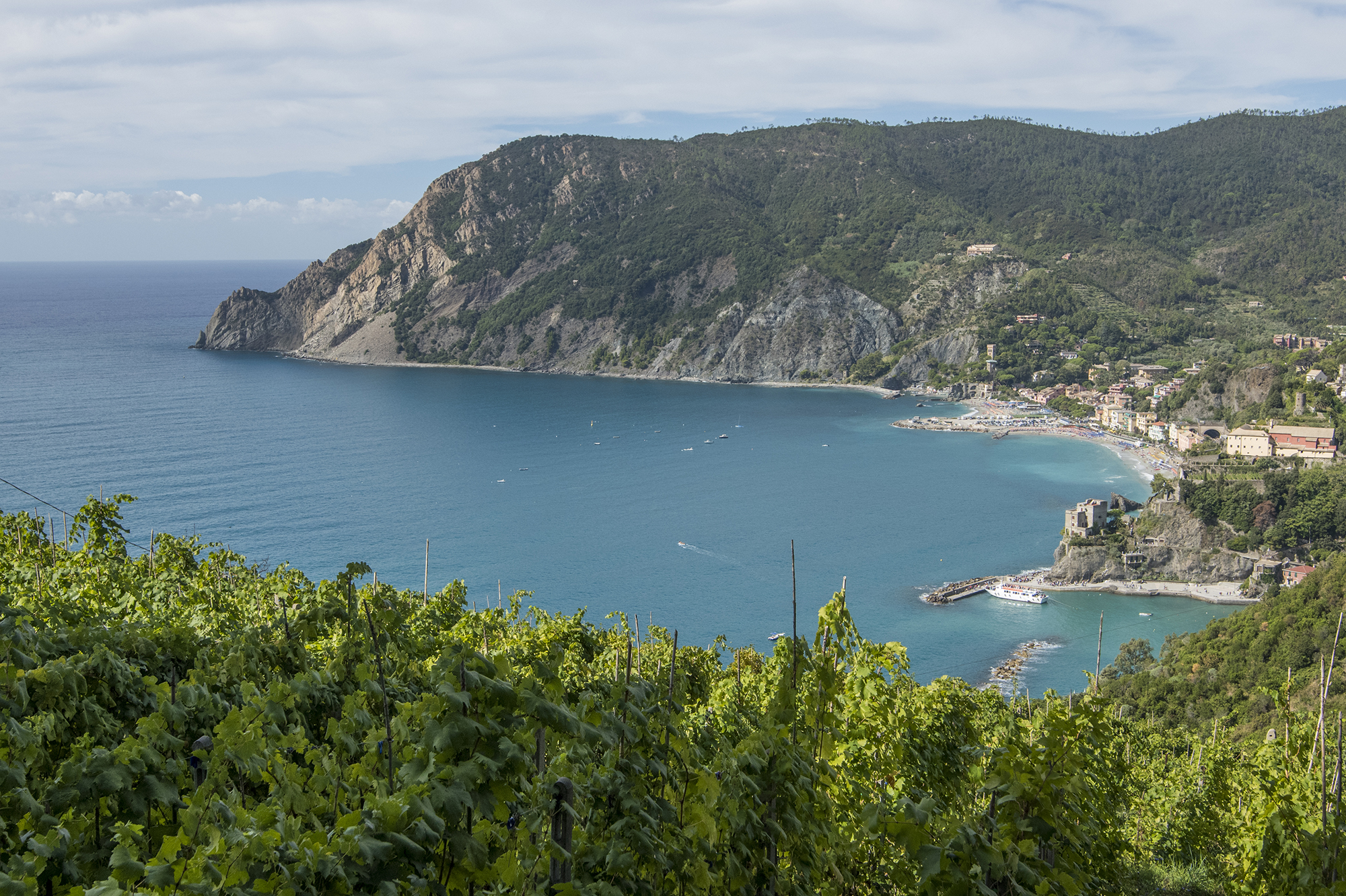 monterosso overlook from vinyard
