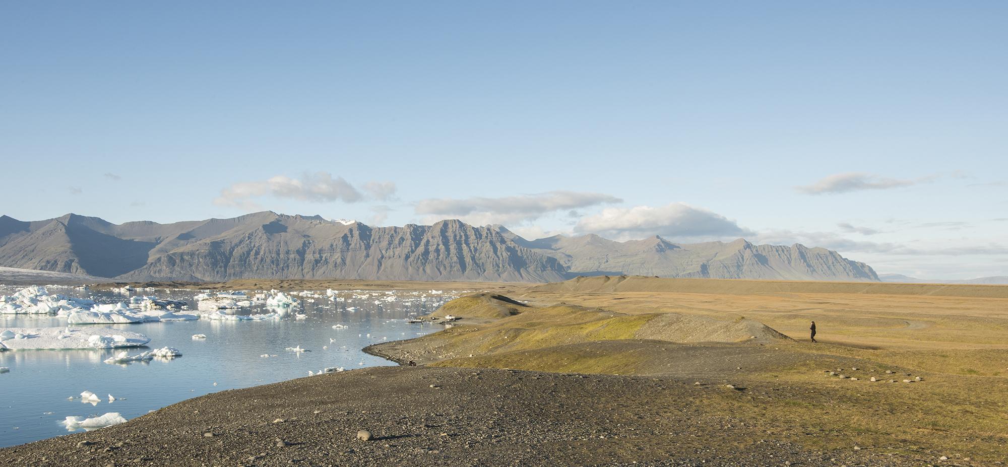 glacier field
