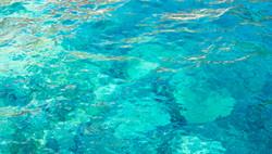 Amoundi Bay Water Abstract