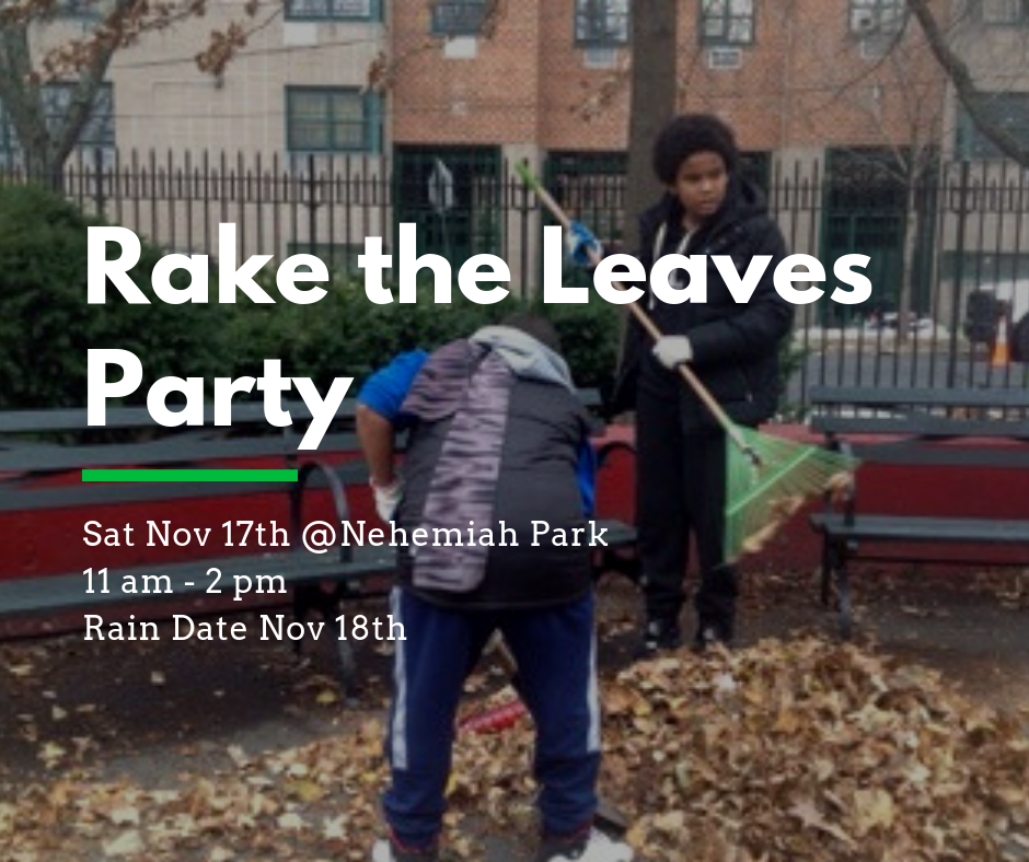 Fall park clean up 2018