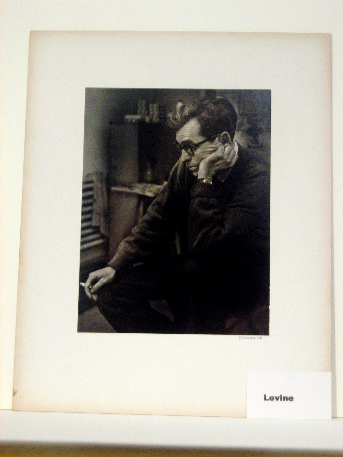 Levine 2.jpg