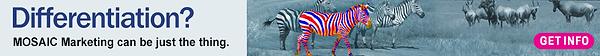 Mosaic-zebras-differentiation-970x90-1.p