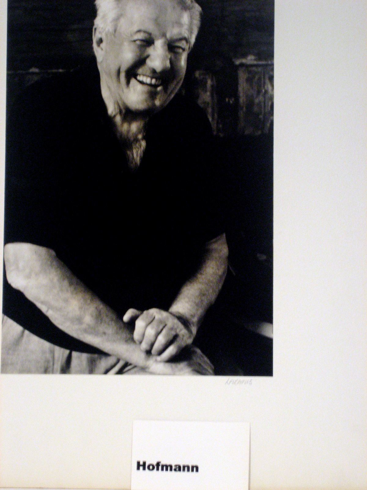Hofmann 5.jpg