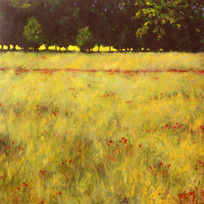 Provence Back Light