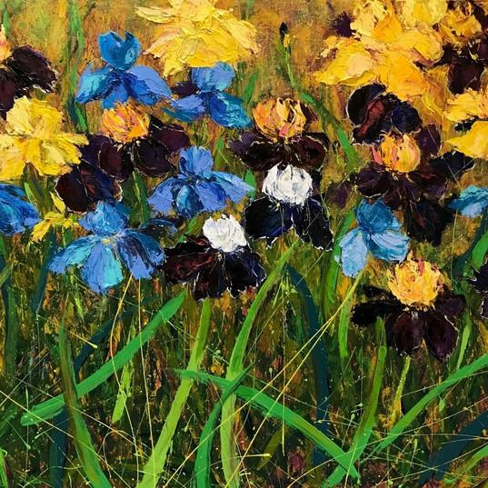 Bearded Irises & Friends