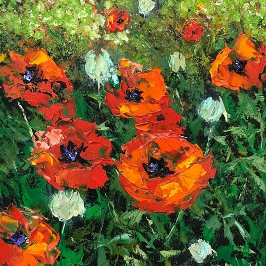 Alla Prima Poppies.jpg