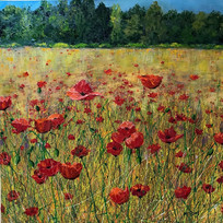 Poppies Galore 40 x 40