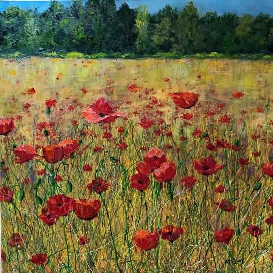 Poppies Galore 40 x 40