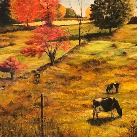 Ferris Farm Idyll