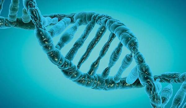 Bioscience-sm.jpg