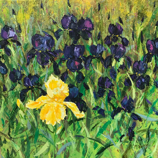 Bunches of Irises