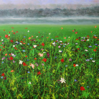 Cosmos in the Mist