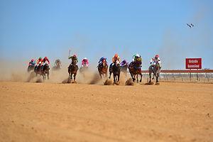 RacesRun.jpg