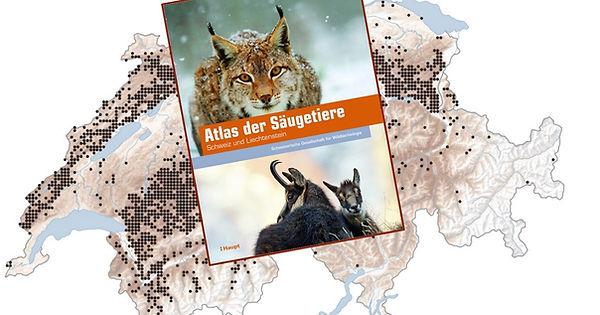 atlas_der_saeugetiere_schweiz.jpg