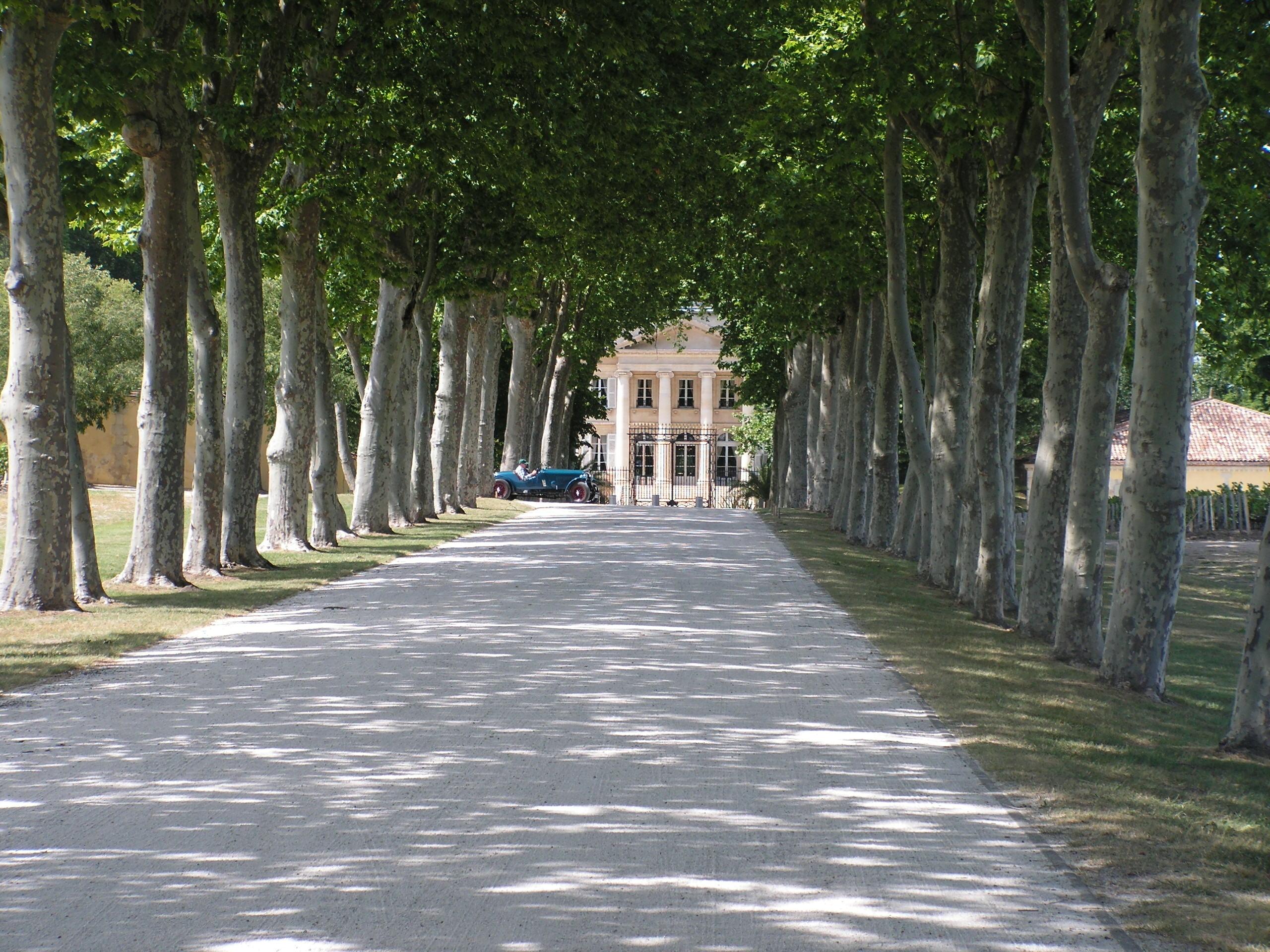 Allée du Château Margaux