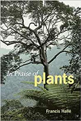 inpraiseof plants.jpg