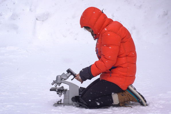 observing snowflakes through microscope