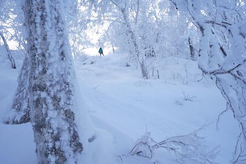 snowboarding in Sapporo Teine