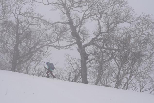 ski touring in Kurodake (Japan)