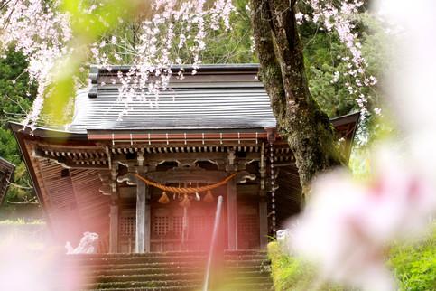 Sanctuaire à Shirakawa-go