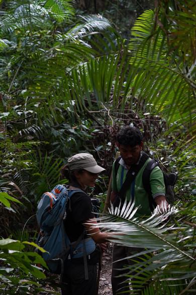 Exploring the jungle of Bardia