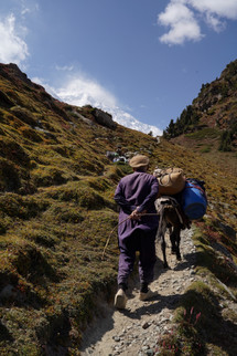 porters on their way to Rakaposhi Base Camp