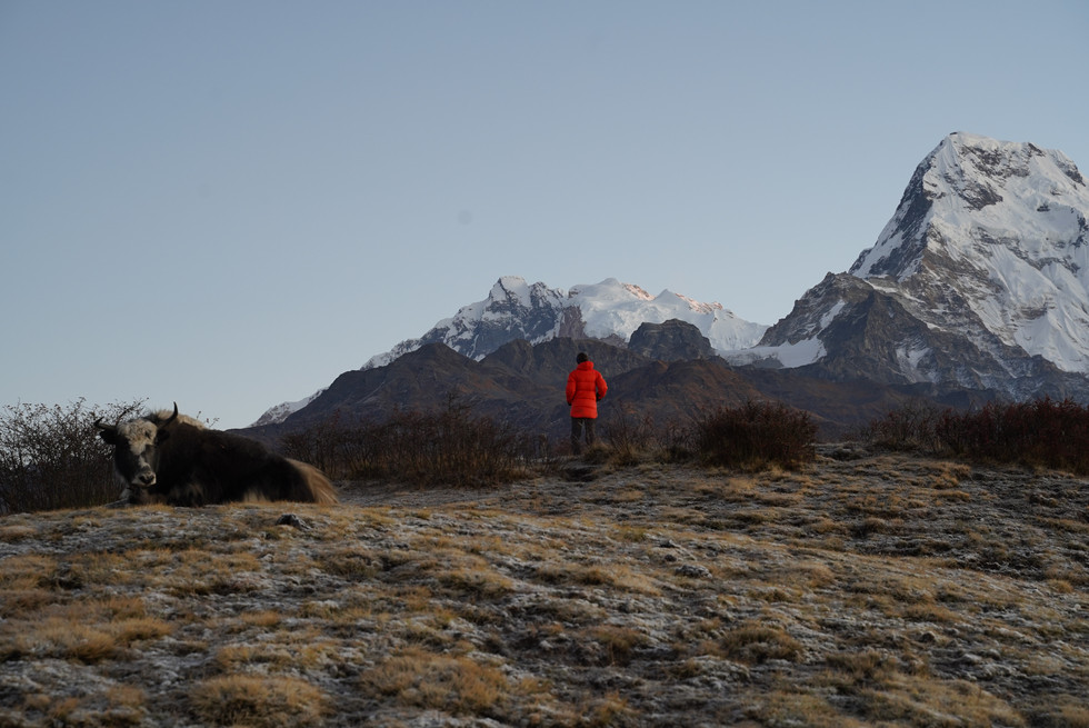 Hiking in the Annapurnas