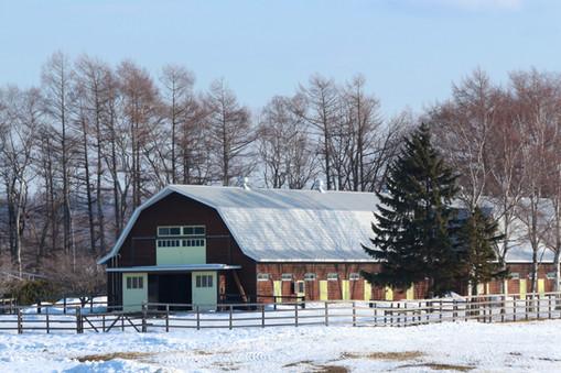 Farm in Hokkaido