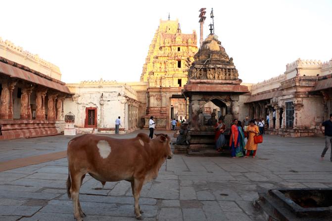 temple in Hampi (Karnataka)