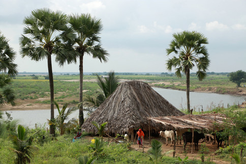 along the eastern cost of India