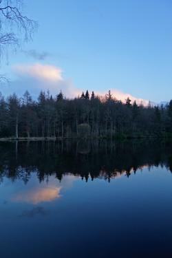 Loch at  Bowhill