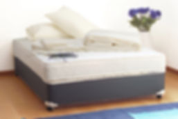 cimexa review bedbug