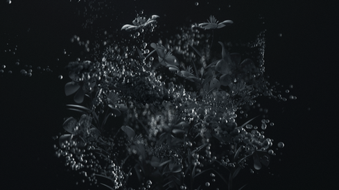 Flower_scene_render_00085.png