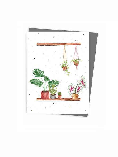 Seed card, Plants design